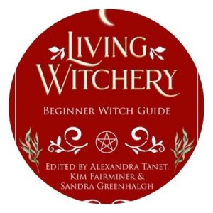 Book cover for Living Witchery Beginner Witch Guide